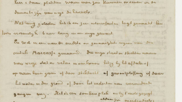 Retranscription of a letter to his brother Theo (April 1879)