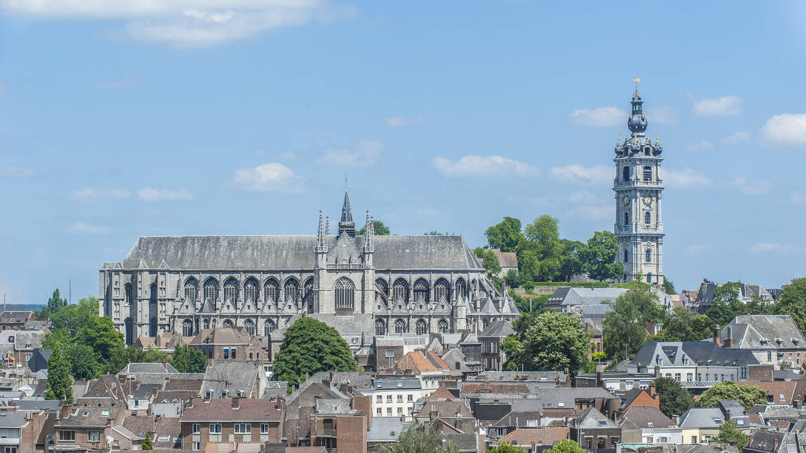 Sightseeing tour in Mons and the region