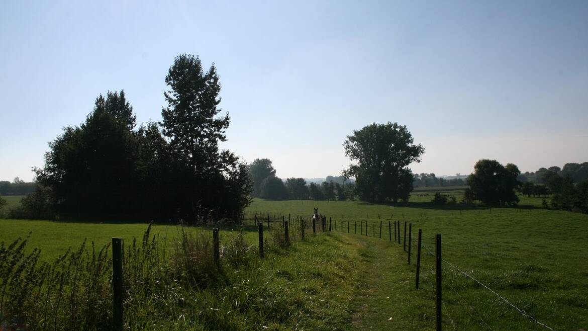 The green land of the Borinage